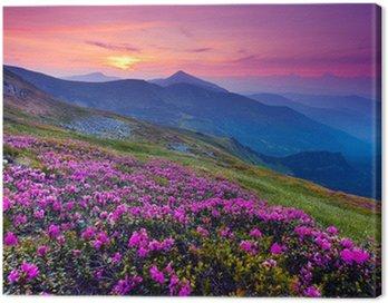 Obraz na Płótnie Górski krajobraz