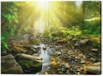 Obraz na Płótnie Górskie rzeki. Spokojnym dekoracje w środku zielonego lasu