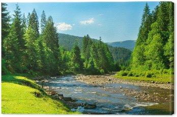 Obraz na Płótnie Górskiej rzeki
