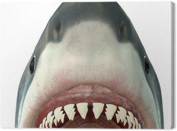 Obraz na Płótnie Great White Shark Jaws