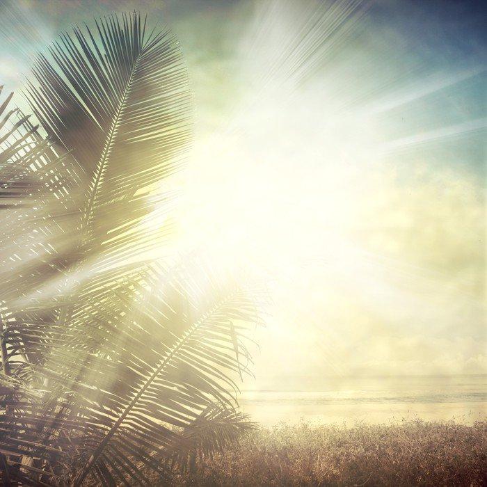 Obraz na Płótnie Grunge palm-9 - Style