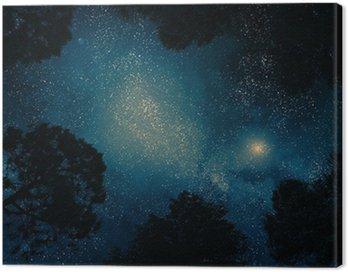 Obraz na Płótnie Gwiaździste niebo przez drzewa