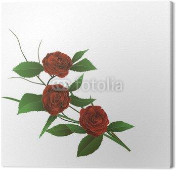Obraz na Płótnie Ilustracja - oddział czerwona róża winorośl jak ikebana