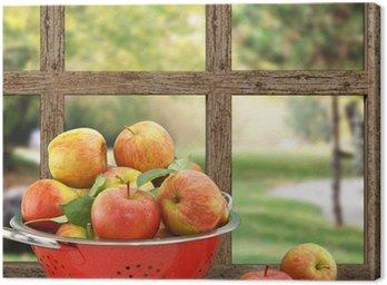 Obraz na Płótnie Jabłka w durszlak na drewniane okna z widokiem