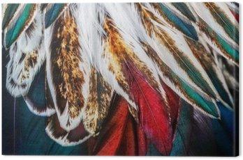 Obraz na Płótnie Jasny brąz grupa pióro jakiegoś ptaka