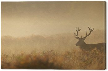 Obraz na Płótnie Jelenia we mgle