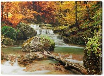 Obraz na Płótnie Jesienią creek lasy z żółtym drzew