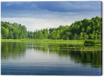Obraz na Płótnie Jezioro i las.