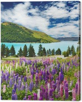 Obraz na Płótnie Jezioro Tekapo, Nowa Zelandia
