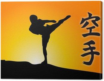 Obraz na Płótnie Karate Kick and sunrise