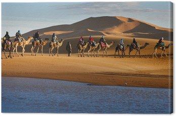 Obraz na Płótnie Karawana przejeżdżających turystów na wielbłądach pustynia jezioro