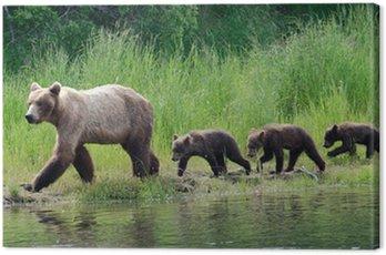 Obraz na Płótnie Kobieta Alaskan Niedźwiedź z Yankees