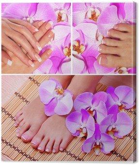Obraz na Płótnie Kolekcja paznokci. french manicure i pedicure