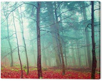 Obraz na Płótnie Kolorowe jesienne drzewa mistyczne