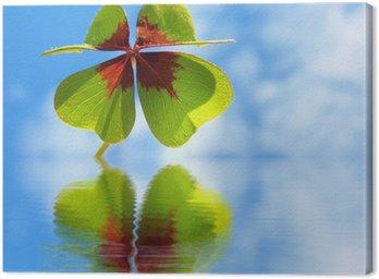 Obraz na Płótnie Koniczyny - Trifolium