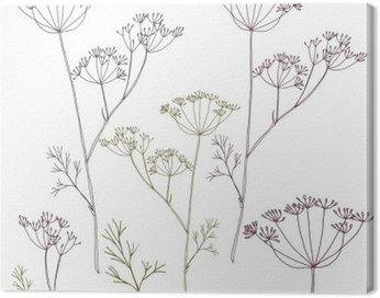 Obraz na Płótnie Koper koper lub kwiaty i liście.
