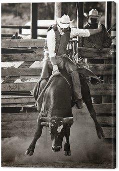 Kowboj rodeo byk konna - przeliczone z dodatkiem ziarna