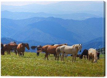 Obraz na Płótnie Krajobraz gór z końmi