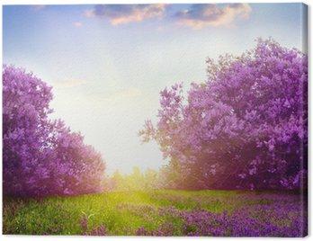 Obraz na Płótnie Krajobraz wiosna