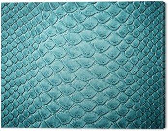 Obraz na Płótnie Krokodyl skóry tekstury turkusowe