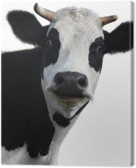 Krowa 2 (10). jpg