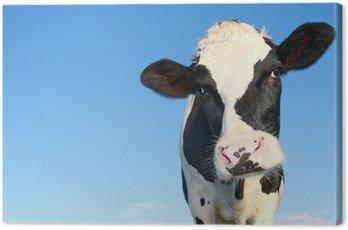 Obraz na Płótnie Krowa Holstein przeciwko nieba