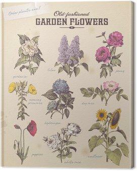 Obraz na Płótnie Kwiaciarnia afisz z 9 klasycznych kwiatów ogrodowych