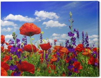 Obraz na Płótnie Kwiaty letnie i chmury