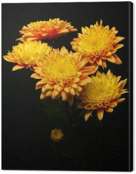 Obraz na Płótnie Kwiaty