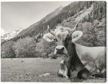 Obraz na Płótnie Ładna krowa