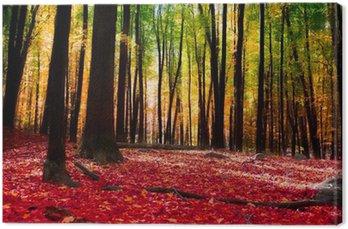 Obraz na Płótnie Las jesienią z złote światło