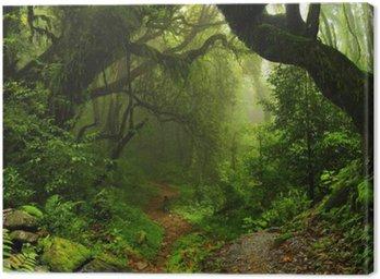 Obraz na Płótnie Las Nepalu