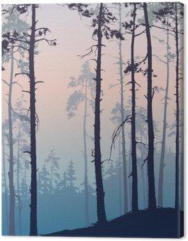 Obraz na Płótnie Las sosnowy
