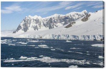 Obraz na Płótnie Lato na Antarktydzie