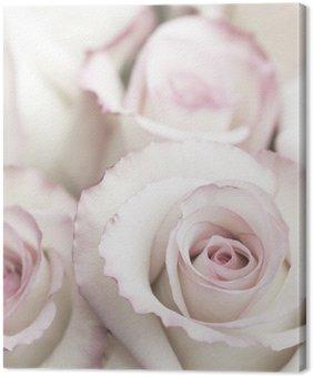 Obraz na Płótnie Lekkie Różowe róże