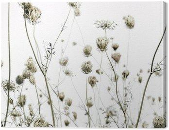 Obraz na Płótnie Letnia łąka sylwetki sztuki tła