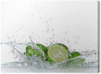 Obraz na Płótnie Limes z wody powitalny samodzielnie na białym tle
