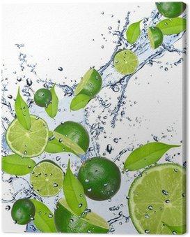 Obraz na Płótnie Limonki wchodzące w plusk wody, odizolowane na białym tle