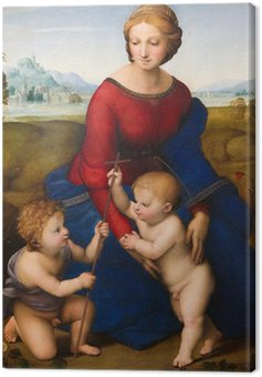 Obraz na Płótnie Madonna na łące przez Raphael (1505)