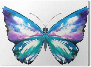Malowane motyl akwarela.