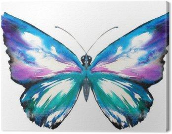 Obraz na Płótnie Malowane motyl akwarela.