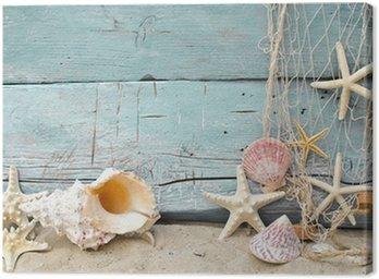 Obraz na Płótnie Maritime przypomnienia urlop: muszle i rozgwiazdy