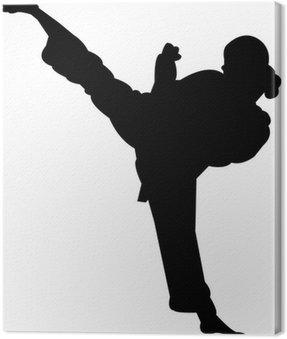 Obraz na Płótnie Martial Arts - Silhouette