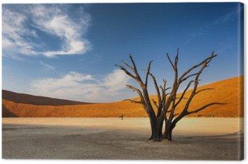 Obraz na Płótnie Martwe drzewa w Sossusvlei, w Pustynia Namib, Namibia