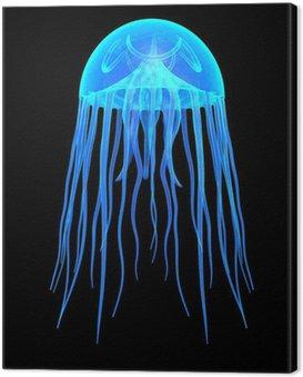 Obraz na Płótnie Meduza