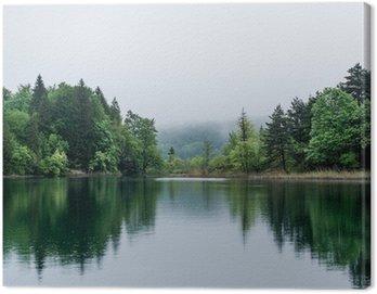 Obraz na Płótnie Mglisty jezioro