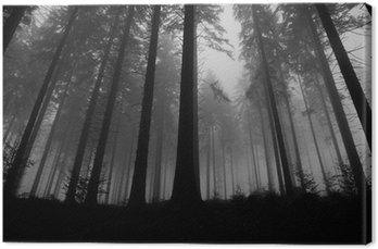 Obraz na Płótnie Mglisty las