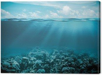Obraz na Płótnie Morskiego lub oceanu podwodny głębokie tło natura