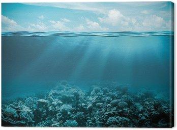 Morskiego lub oceanu podwodny głębokie tło natura