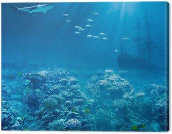 Morza lub oceanu, pod wodą z rekinem i skarby statek zatonął